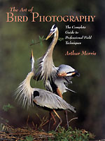 Art of Bird Photography